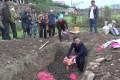 【视频】永定区农业农村局开展外来入侵生物福寿螺现场灭除活动