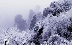 张家界景区普降大雪 吸引众多游客
