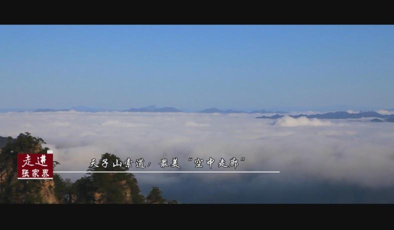 """天子山索道:最美""""空中走廊"""""""