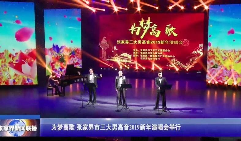 【视频】为梦高歌-张家界市三大男高音2019新年演唱会举行