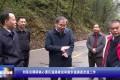 【视频】刘革安调研核心景区道路建设和游步道提质改造工作