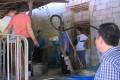【视频】 武陵源区全面开展非洲猪瘟防控夏季攻势联合执法行动