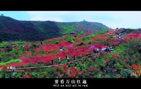 湖南形象宣传片《青春湖南》