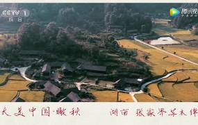 【央视】瞰秋之湖南张家界苏木绰