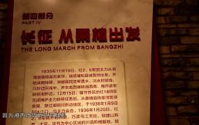 12.23 刘家坪白族乡:红色文化助力乡村振兴发展