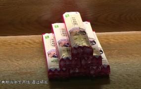 """2019-01-20  """"金融活水""""助脱贫"""