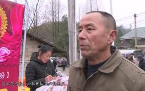 2019-02-03   脱贫致富年货节