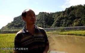 《美丽乡村行》2019-09-15 李元山的生态综合种养梦