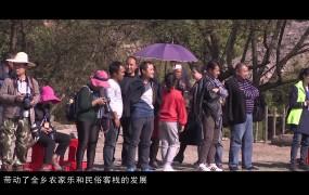 《美丽乡村行》2019-11-03四都坪乡:因地制宜带领群众脱贫致富