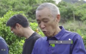 《美丽乡村行》2020-11-16 李洪波:柑桔品改初见成效