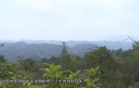【视频】《美丽乡村行》2020-11-02危房改造暖民心