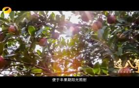 【正片】《这八年——精准扶贫在湖南》 第5集 《走向振兴》