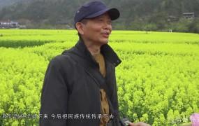 【视频】《美丽乡村行》2021-03-22苏木绰 探春赏花