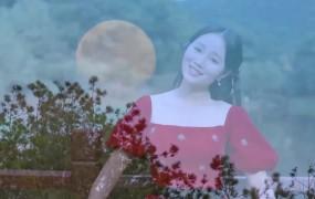 MV   玫瑰姑娘