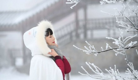 听雪落下的声音!(附:张家界多幅雪景图片)