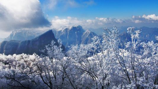 天门山:立冬迎雾凇景观 比去年提前13天