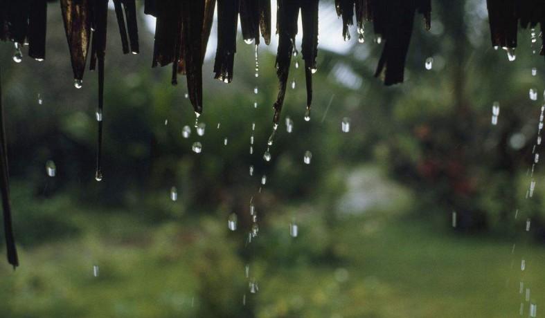 整个2月太阳持续失联 冬雨时长创湖南54年纪录