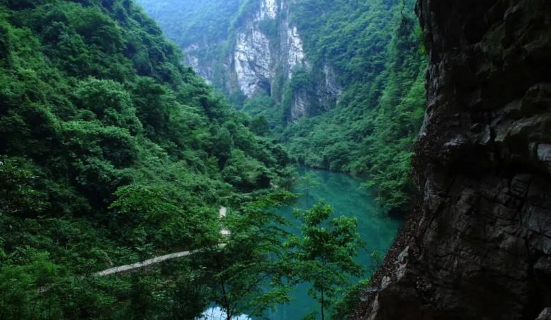 张家界如诗如画的大峡谷,一辈子最少要去一次的地方!
