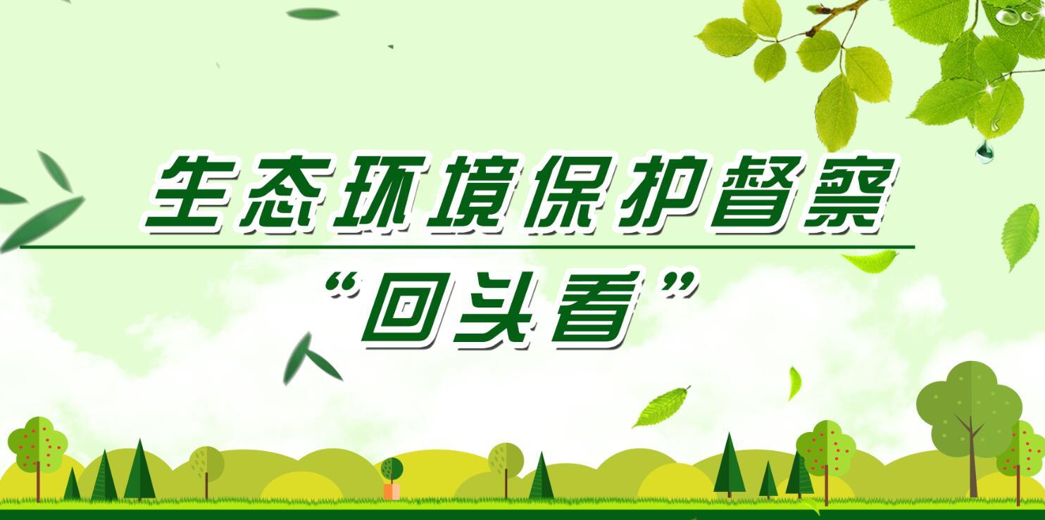 """【专题】生态环境保护督察""""回头看"""""""